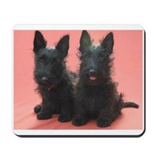 Scottish Terriers Mousepad