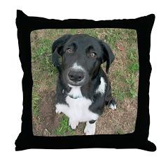 Funny Dog Throw Pillow