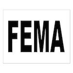FEMA Small Poster