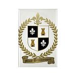 MIUS d'ENTREMONT Family Crest Rectangle Magnet (10