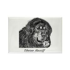 Cool Tibetan mastiff Rectangle Magnet