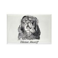 Tibetan mastiff Rectangle Magnet