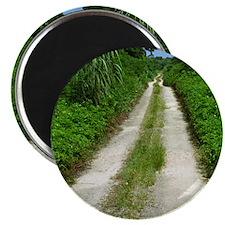 Taketomi Dirt Road Magnet