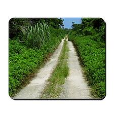 Taketomi Dirt Road Mousepad