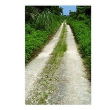 Taketomi Dirt Road Postcards (Package of 8)