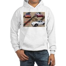 ALL ABOUT THE CARS Hoodie