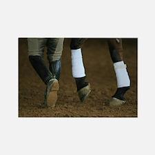 Dressage Horse Magnet