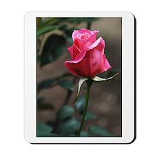 Pink Rosebud Mousepad