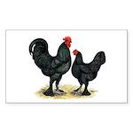 Black Langshan Chickens Rectangle Sticker 50 pk)