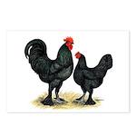 Black Langshan Chickens Postcards (Package of 8)