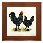 Black Langshan Chickens Framed Tile