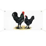 Black Langshan Chickens Banner