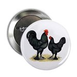 """Black Langshan Chickens 2.25"""" Button (10 pack"""