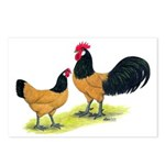 Gold Lakenvelder Chickens Postcards (Package of 8)