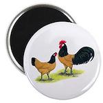 Gold Lakenvelder Chickens Magnet