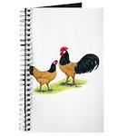 Gold Lakenvelder Chickens Journal