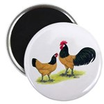 "Gold Lakenvelder Chickens 2.25"" Magnet (10 pa"