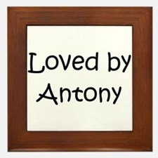 Cool Antony Framed Tile