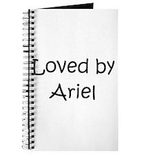 Funny Ariel Journal
