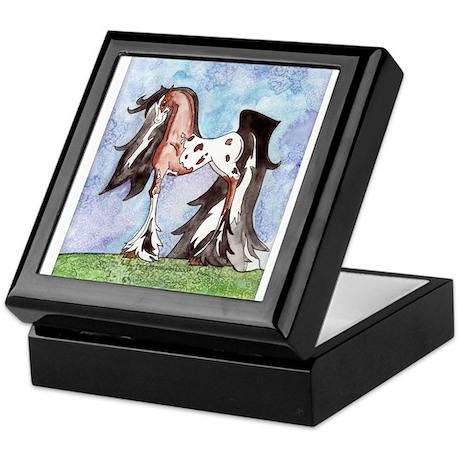 Appaloosa Gypsy Horse Keepsake Box