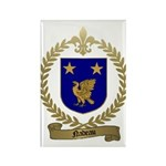 NADEAU Family Crest Rectangle Magnet (100 pack)
