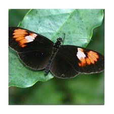 The Postman Butterfly Tile Coaster
