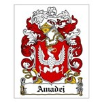 Amadej Family Crest Small Poster