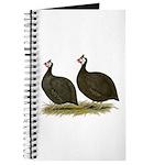 Chocolate Guineas Journal