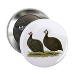 """Chocolate Guineas 2.25"""" Button (10 pack)"""