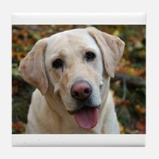 Cute Dog yellow lab Tile Coaster