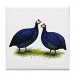 Royal Purple Guineas Tile Coaster