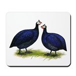 Royal Purple Guineas Mousepad