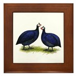 Royal Purple Guineas Framed Tile