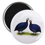 "Royal Purple Guineas 2.25"" Magnet (100 pack)"
