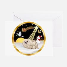 Night Flight/Pekingese Greeting Card