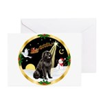 Night Flight/Newfie #2 Greeting Cards (Pk of 10)