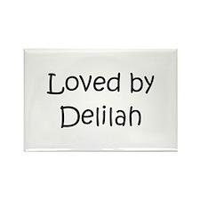 Funny Delilah Rectangle Magnet