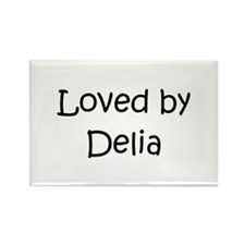 Unique Delia Rectangle Magnet