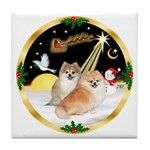Night Flight/2 Pomeranians Tile Coaster