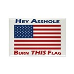 Burn THIS Flag Asshole Magnets (10)