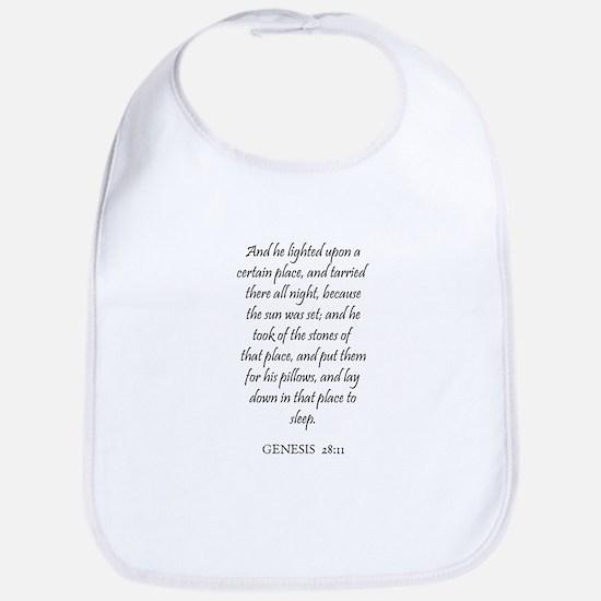GENESIS  28:11 Bib