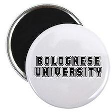 University Magnet