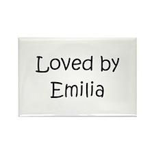 Unique Emilia Rectangle Magnet