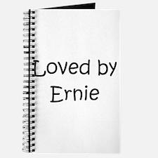 Unique Ernie Journal