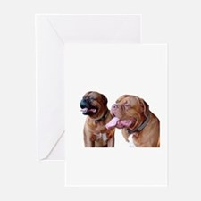 *NEW* Greeting Cards (Pk of 10)