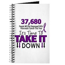 Take Down Pancreatic Cancer 4 Journal