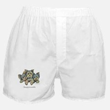 Yorkshire Terrier Puppies Boxer Shorts