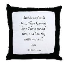 GENESIS  30:29 Throw Pillow