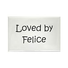 Cute Felicity Rectangle Magnet