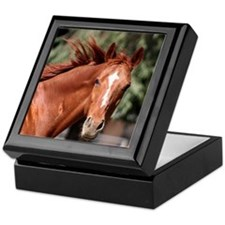 Red Horse Keepsake Box